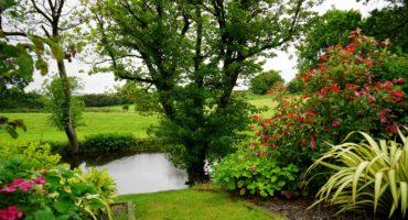 Gartenpflege und Gestaltung